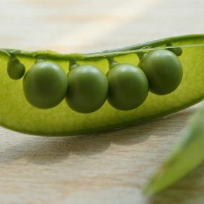 Mazărea – fructul din farfuria cu legume