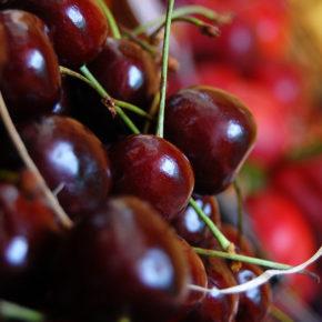 Cireașa – cel mai energizant fruct roșu