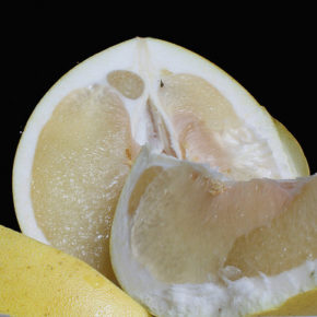 Pomelo – uriaşul citricelor