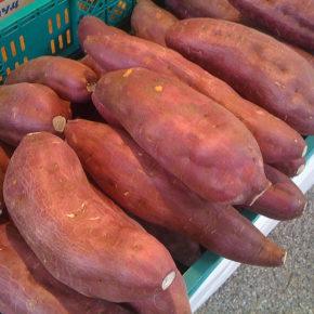 Un cartof dulce sau o bombă cu beta-caroten?