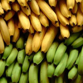 Banana-cel mai controversat fruct din dieta bebeluşilor