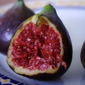 Smochine, cele mai vechi fructe cultivate de om