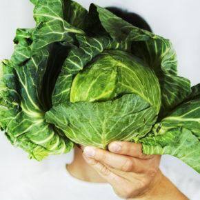 Varză, un aliment bogat în vitamine, minerale, fibre