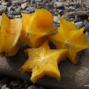 Carambola, fructul stea care previne răcelile