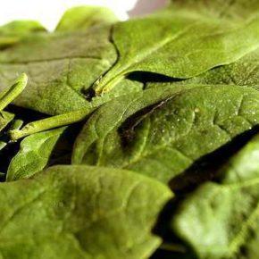 Salată de spanac