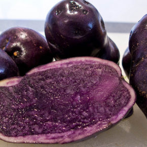 Cartof violet sau cea mai sănătoasă legumă