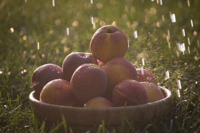 fructe la cuptor