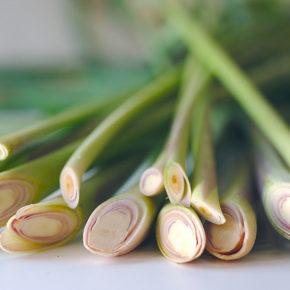 Lemongrass, iarba cu multe beneficii!