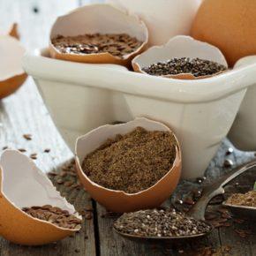 Top 5 semințe indispensabile