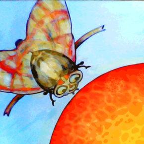 Musculiţa Ceratitis şi portocala