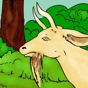 Barba caprei – Poveste pentru copii