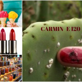 Carmin (E 120) colorant alimentar natural?